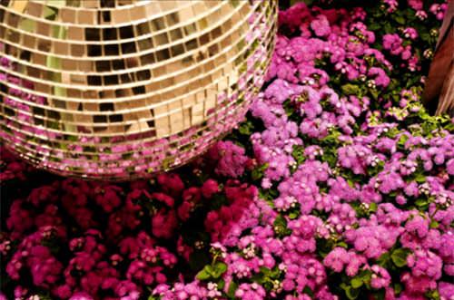 festa-15-anos-decoracao-roxo-lilas-marcelo-bacchin-03