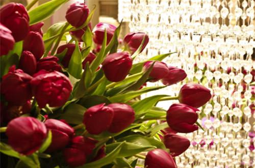 festa-15-anos-decoracao-roxo-lilas-marcelo-bacchin-06